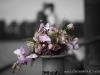 newborn-bruids-baby-kids-glamour-bedrijfs-fotografie-regio-bommelerwaard-rosmalen-denbosch-vlijmen-geldermalsen-oss-leerdam-gelderland-utrecht-by-cindy-duindam-de-jong_32
