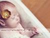 baby-newborn-family-bruids-glamour-bedrijfs-kids-model-fotografie-regio-bommelerwaard-vlijmen-rosmalen-den-bosch-leerdam-oss-tilburg-utrecht-eindhoven-by-cindy-duindam-de-jong_0